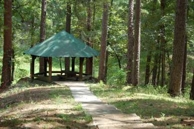Loran/Claiborne Trailhead Camp