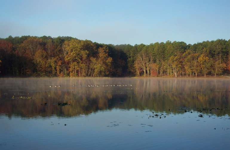 Dixon Springs State Park