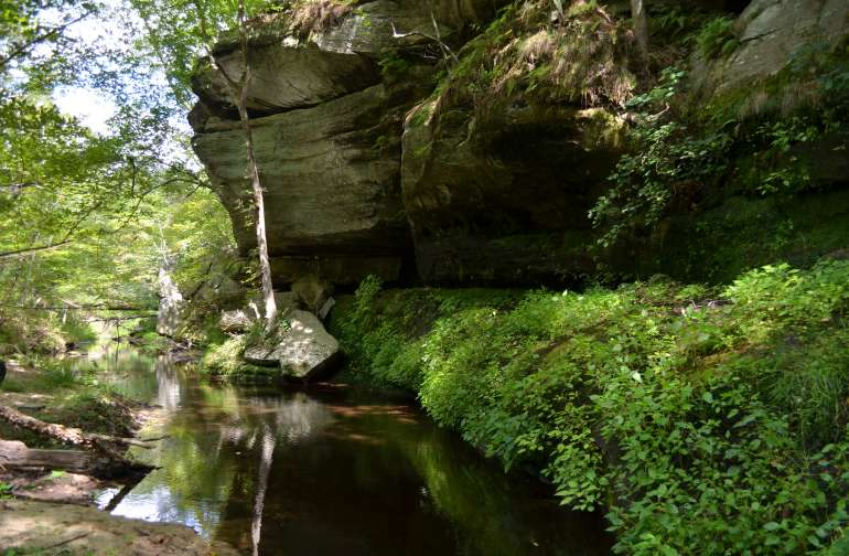 State Parks in Missouri - Best Campgrounds | Hipcamp on ozark park trail map, missouri military installations map, st. joe state park trail map, missouri state house map, detailed missouri state map, middle tennessee parks map, trail of tears state park map, missouri transportation map, mississippi parks map, missouri towns map, jefferson city missouri state map, missouri byways map, louisville parks map, missouri schools map, missouri national forests map, maryland parks map, missouri waterfalls map, missouri islands map, missouri historic sites map, missouri rest areas map,