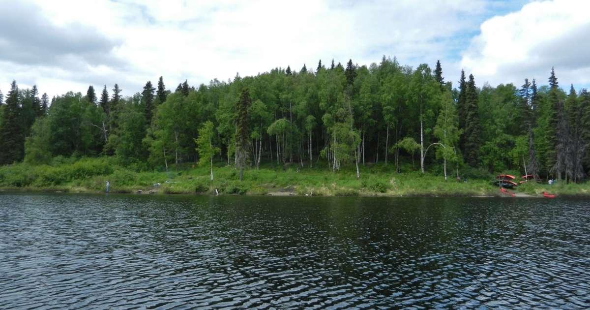 South Rolly Lake Campground Nancy Lake Ak