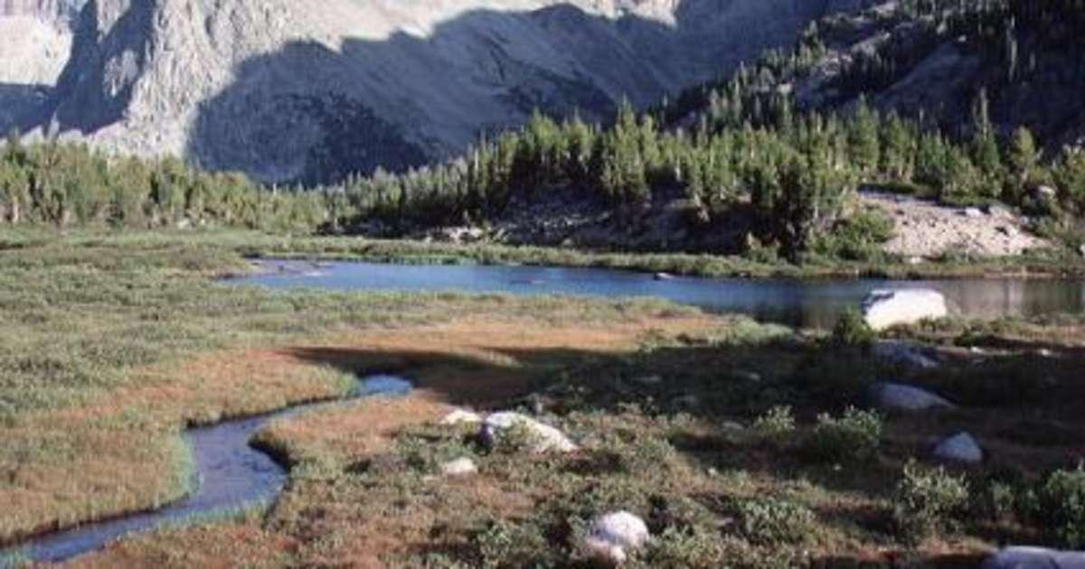Falls Campground Shoshone Wy