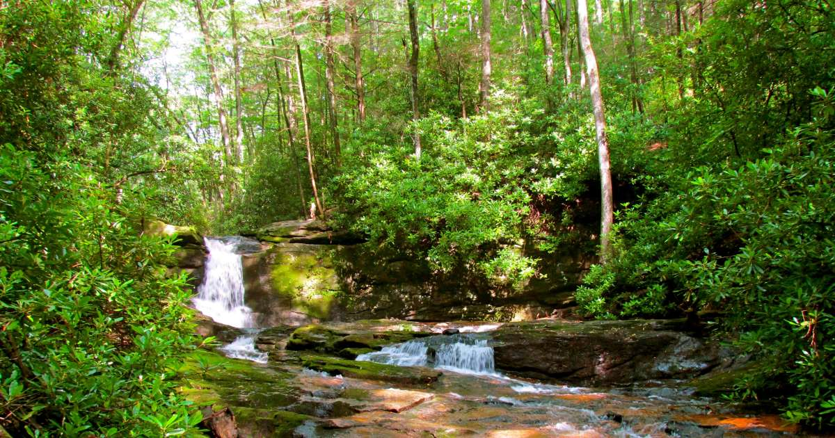 Best Camping In And Near Chattahoochee Oconee National Forest