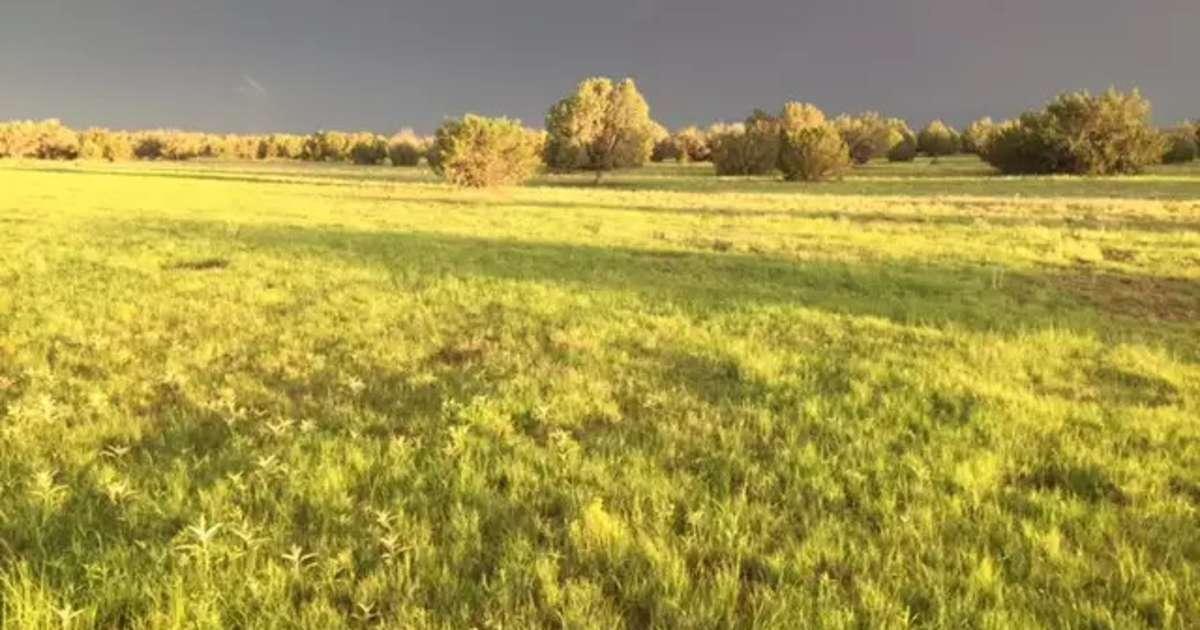 Antelope Run Rv Camping And Rentals Antelope Run