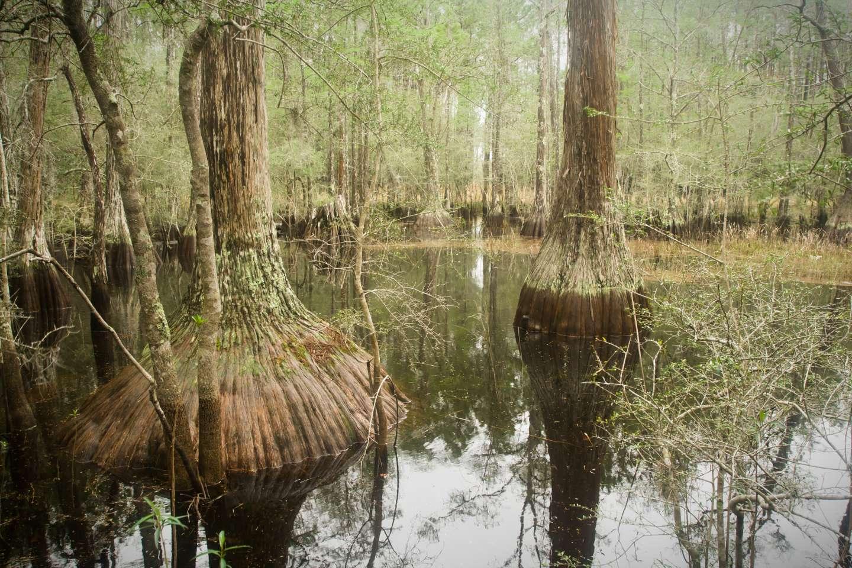 Porter Lake Campground, Apalachicola, FL: