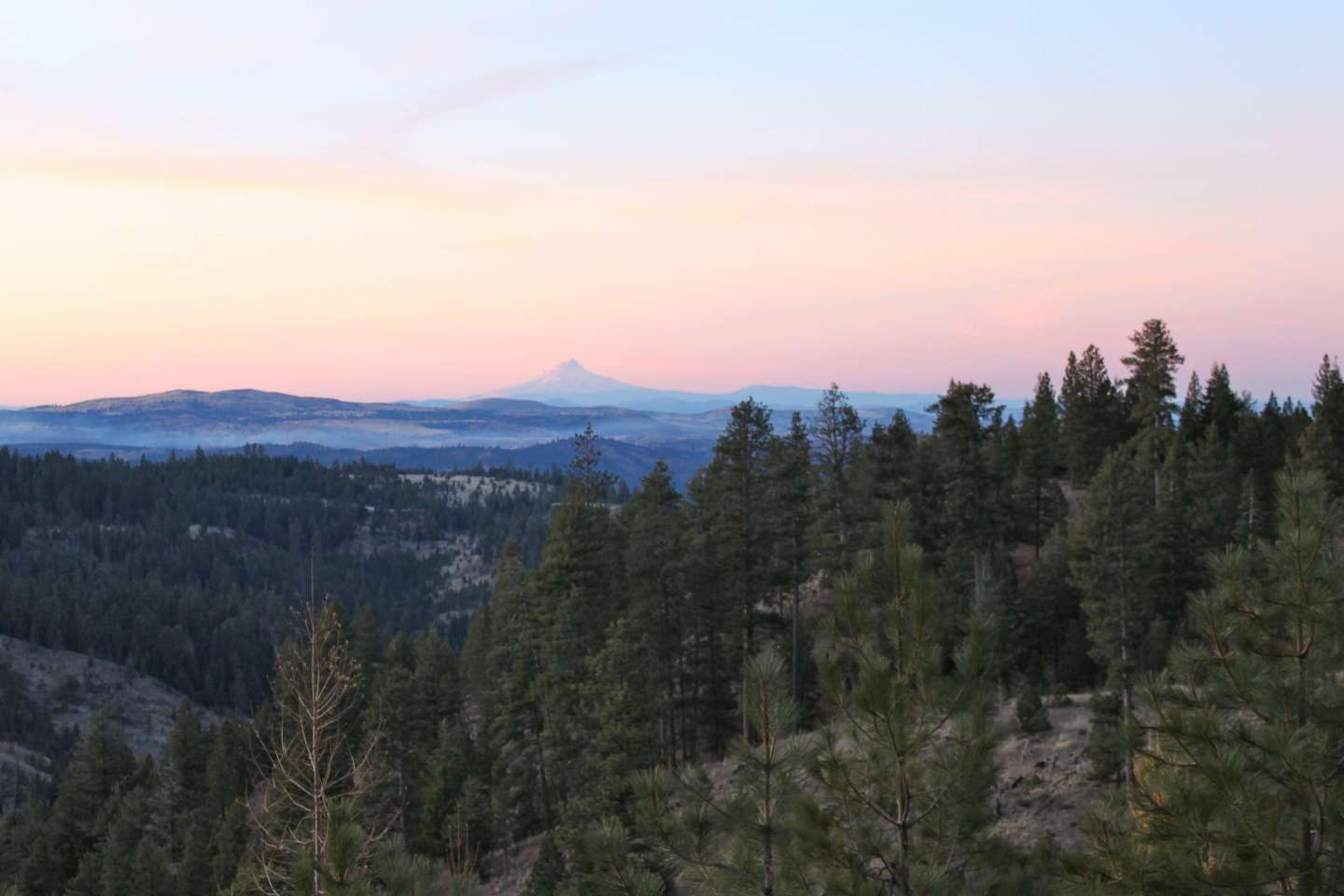 Best Camping in and Near Ochoco National Forest