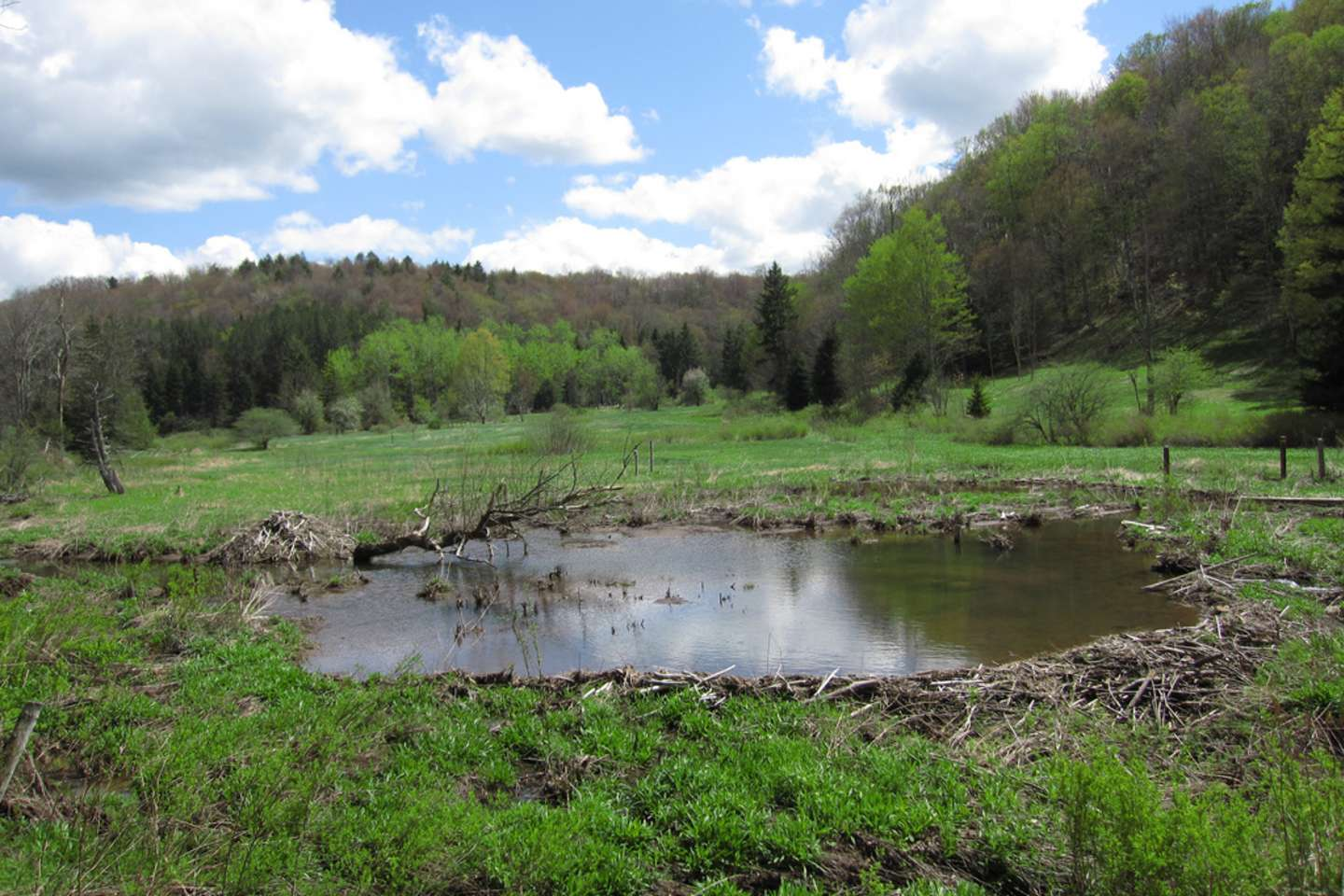 Blue Bend Recreation Area And Campground, Monongahela, WV: