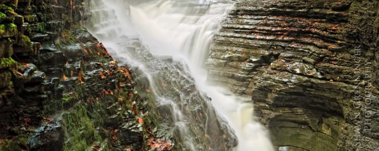 Best Camping in and Near Watkins Glen State Park on