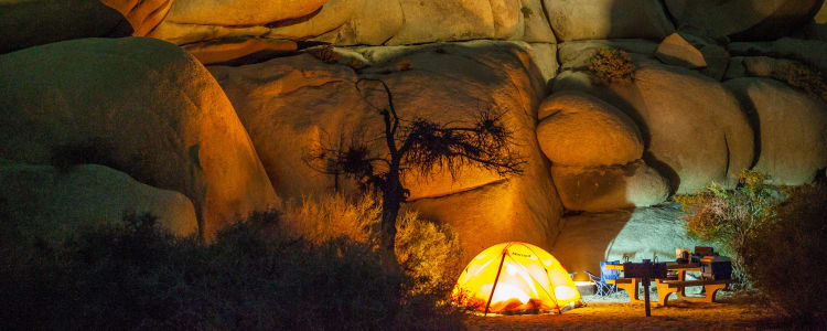 Best Camping In Joshua Tree National Park