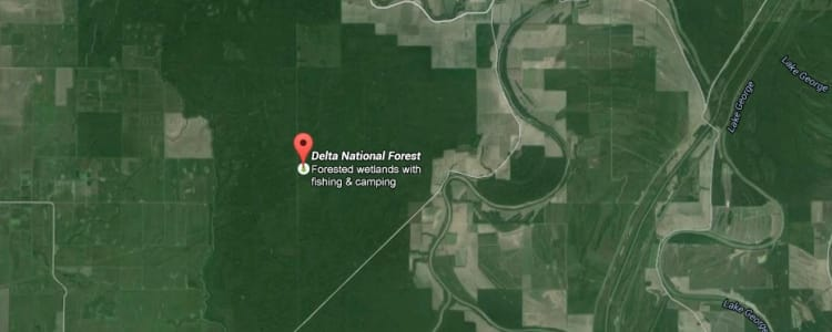 Best Camping In And Near Delta National Forest