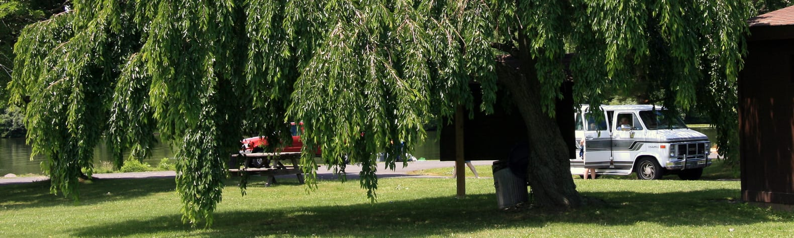 20 Amazing Campsites Near Nockamixon State Park