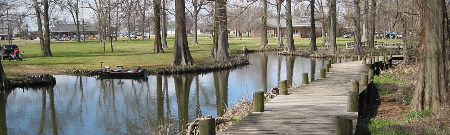 Best Camping in and Near Reelfoot Lake State Park