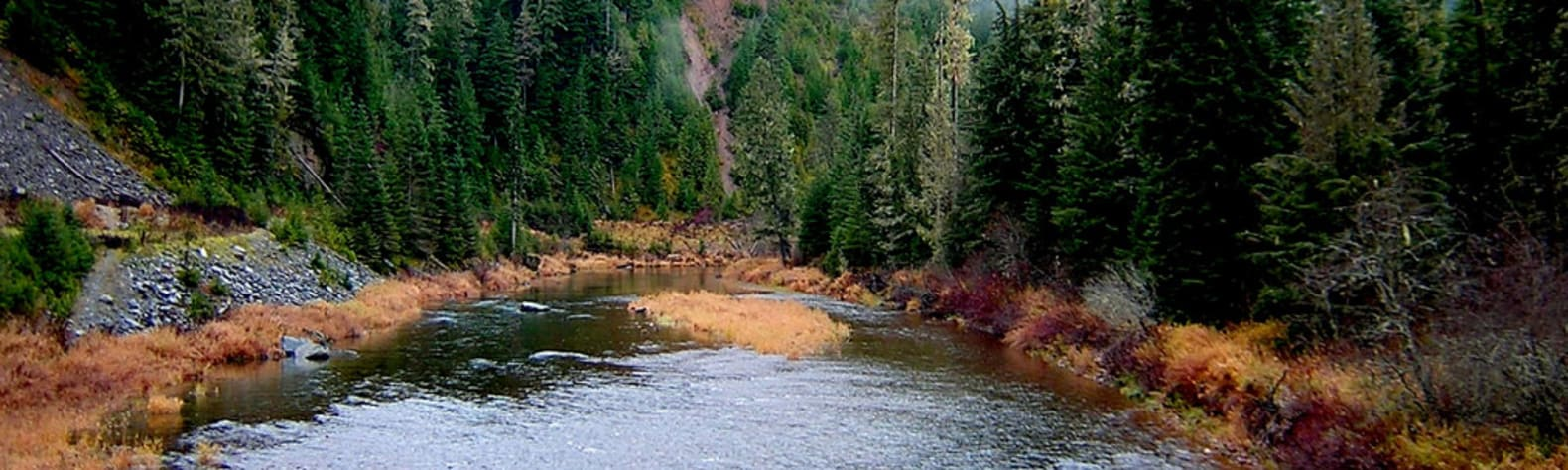 Best Camping in and Near Coeur d'Alene River Campground and
