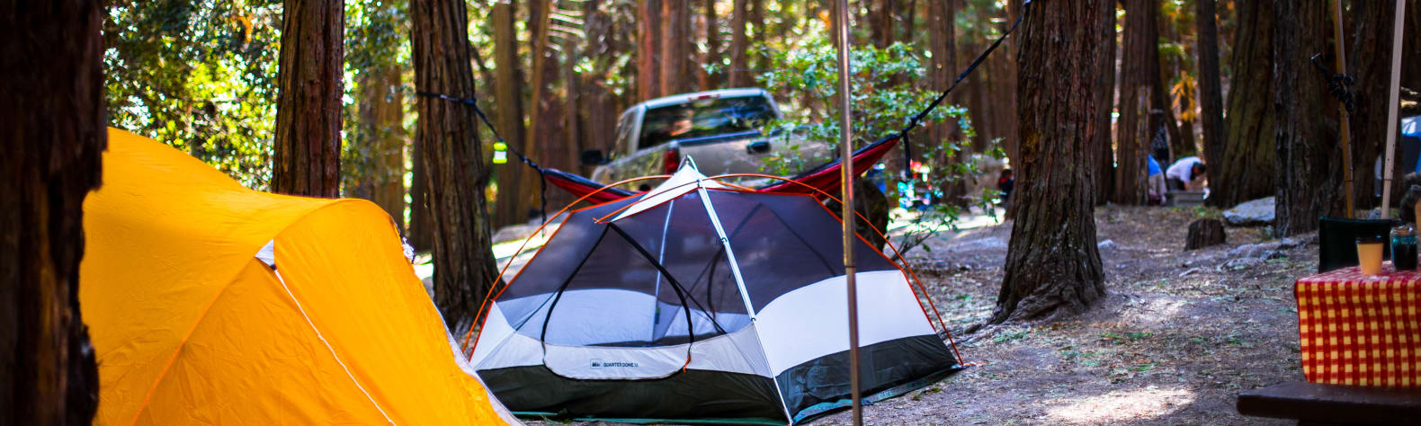 Best Camping In And Near Sequoia National Forest