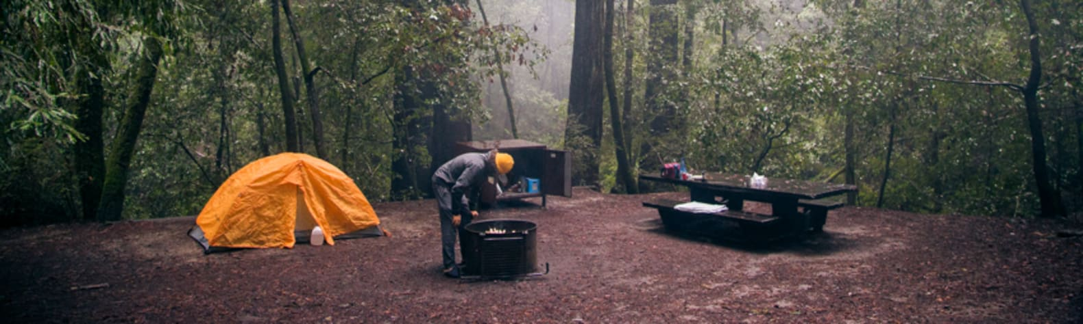 20 Best Campsites in and Near Big Basin Redwoods State Park