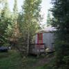Tall Pines Wilderness Yurt