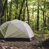 Magic Forest Farm Camp