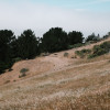 Hogback Site