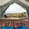 Tree Frog Canvas Platform Tent