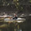 Privet Spring Fed Creek