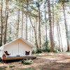 Modern Camping Mendocino: Classic