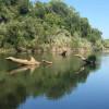 Russian River Redwood Camping