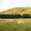 Shenandoah Mountain Farm