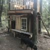 Camp Caledonia Tree Shack