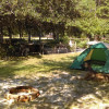 Man Cave Tent Camp + Hookups