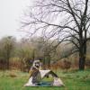 Enchanted Oaks: Camping/Fishing