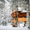 Montana Treehouse Retreat