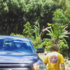 The Coconut Grove All-Inclusive
