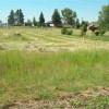 Grangeville Farm
