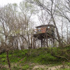 Tree house on Creek