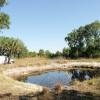 Okeechobee Prairie Camping Sweet