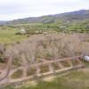 Echo Island Ranch