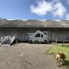 Camp Ammo Magazine Car Van Trailer