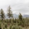 Panoramic Rocky Mountain Views!