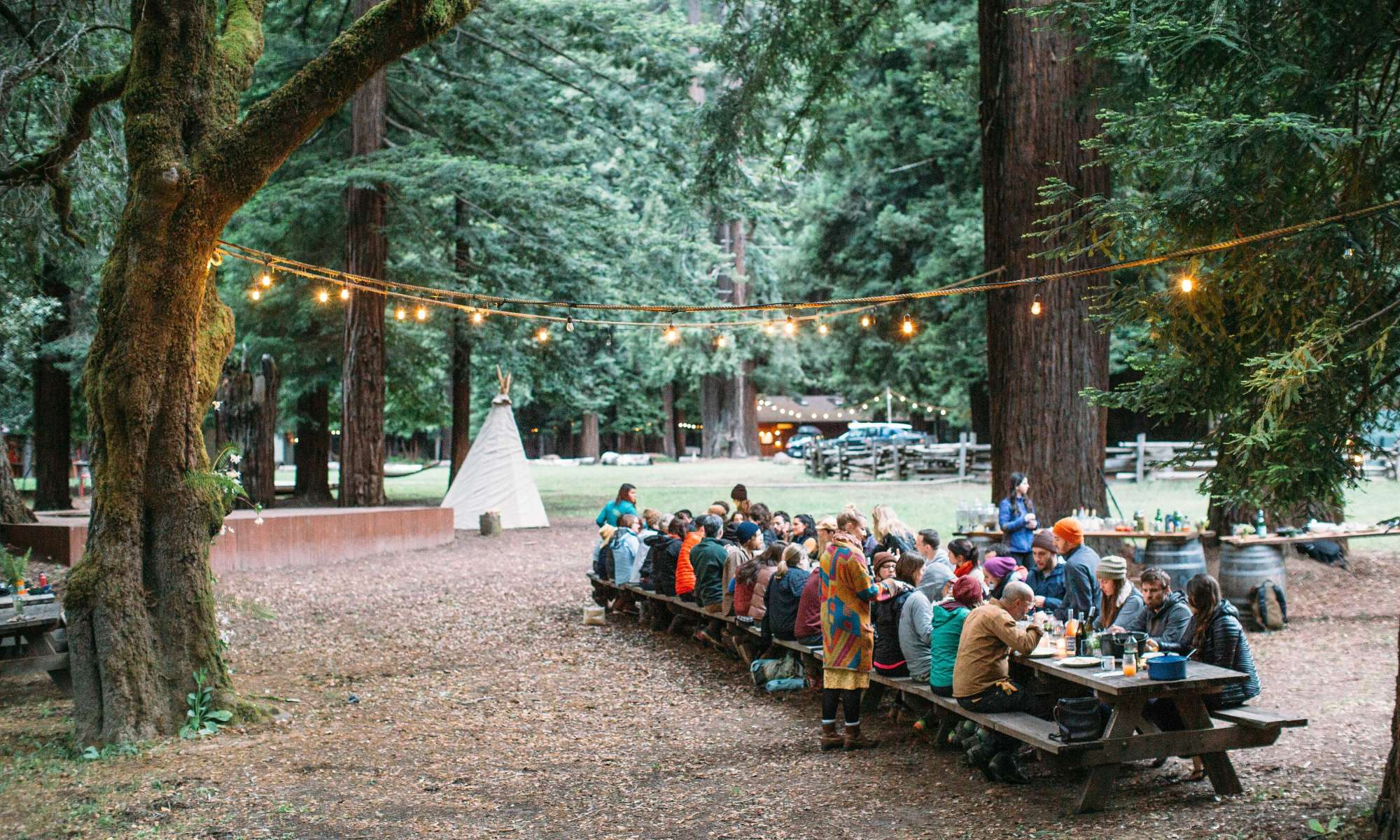 Hipcampout Summer Series: Foraging with Juniper Ridge And Forage SF
