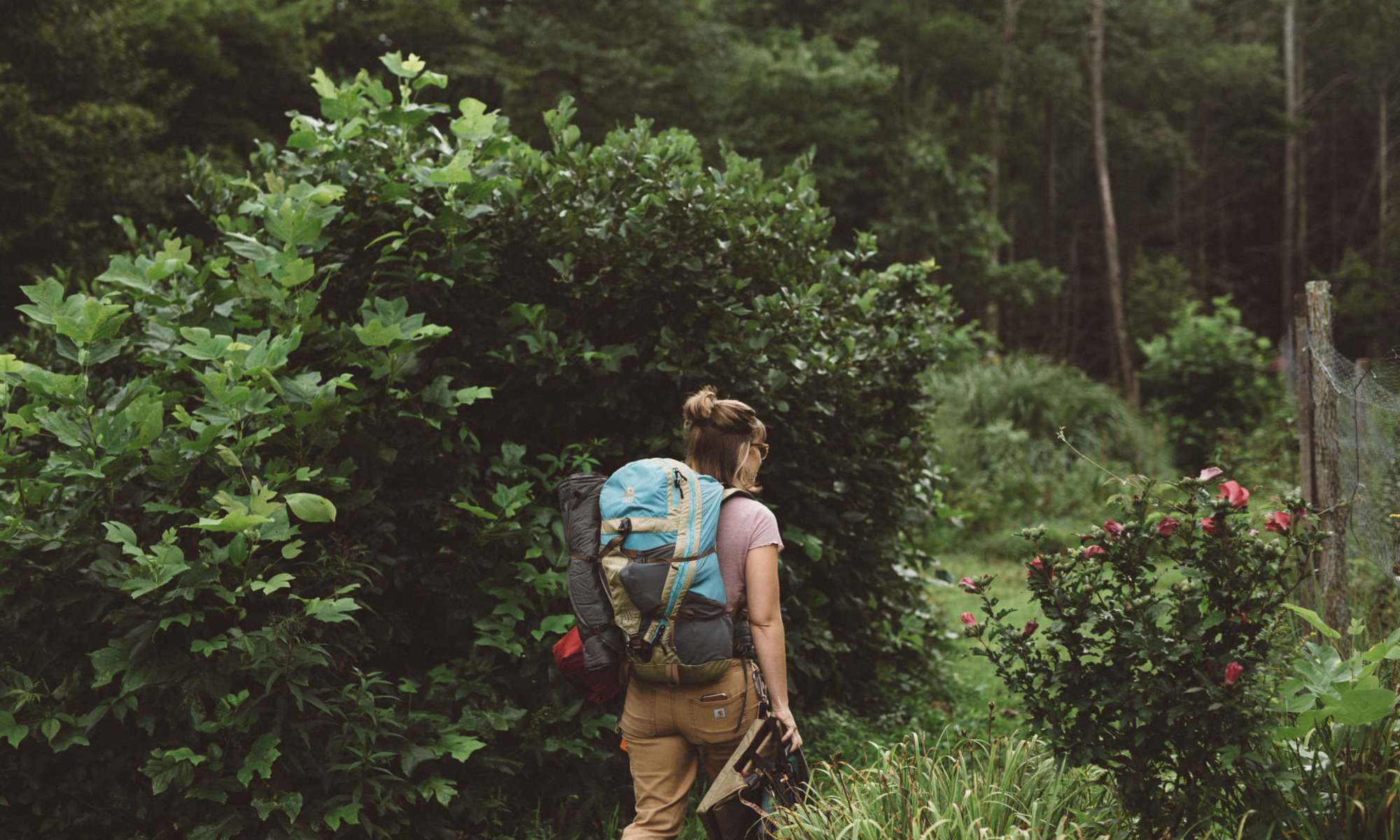 Farm-Fresh Meals, Stargazing, Peaceful Streams, and Camping Near Asheville