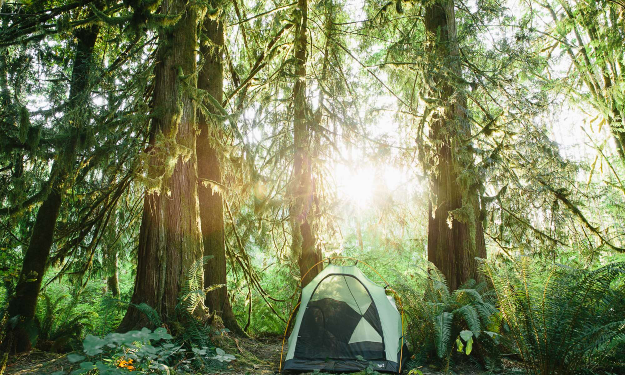 Guide to Buying a Tent