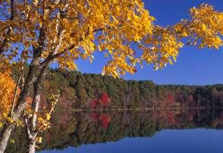 Lake Bob