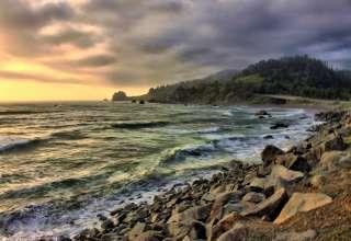 Del Norte Coast Redwoods