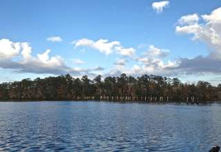 Ochlockonee River