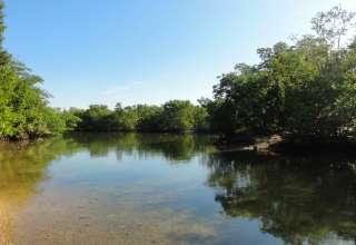 Oleta River