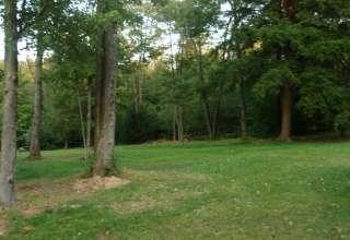 Chapman Park