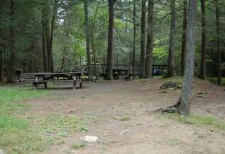 Reeds Gap Park