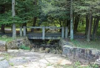 Penn-Roosevelt Park