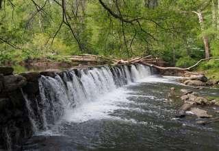 Ridley Creek Park