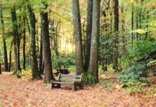 Tuscarora Park