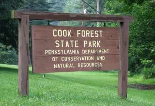 Cook Forest Park